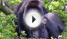Belize Adventure Tours, $100.00, Belize Adventure Travel